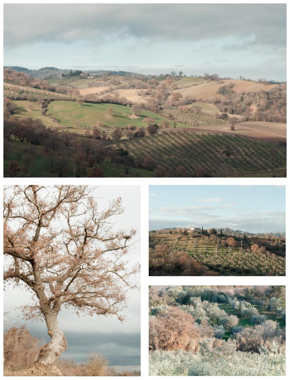 2012_Toscana_01